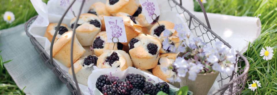 Mini-muffins aux mûres